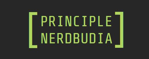 principii nerdbudia
